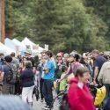 2016 Street Fair Crowd